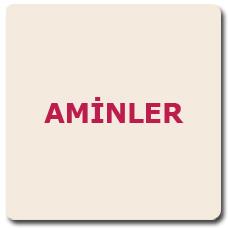 AMİNLER